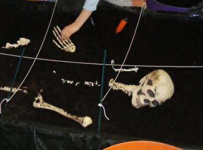 Buried skeleton