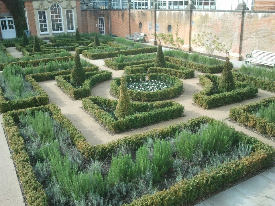 1000 images about knot gardens on pinterest knots for Tudor knot garden designs