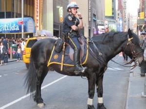 Mon2 policehorse