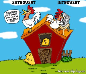 Extrovert Rooster